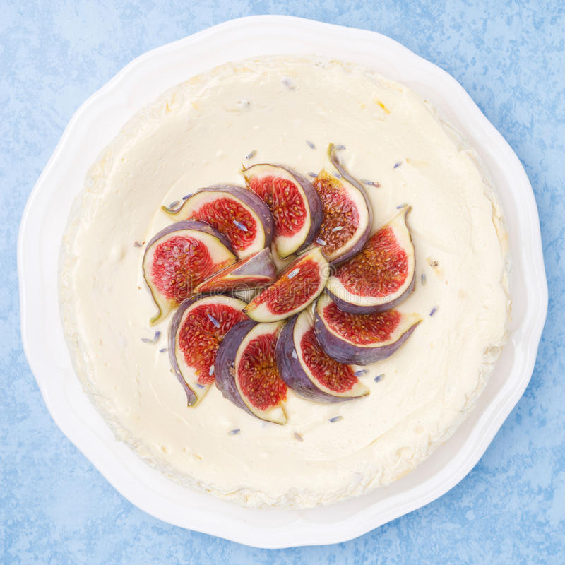 Cheesecake with lavender honey and figs, top view royalty free stock photography