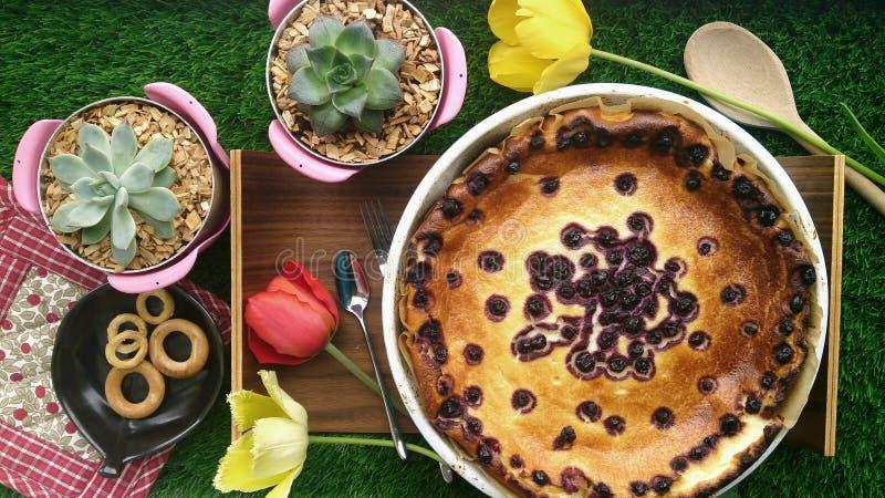 Cheesecake wyśmienite śniadanie zdjęcia royalty free