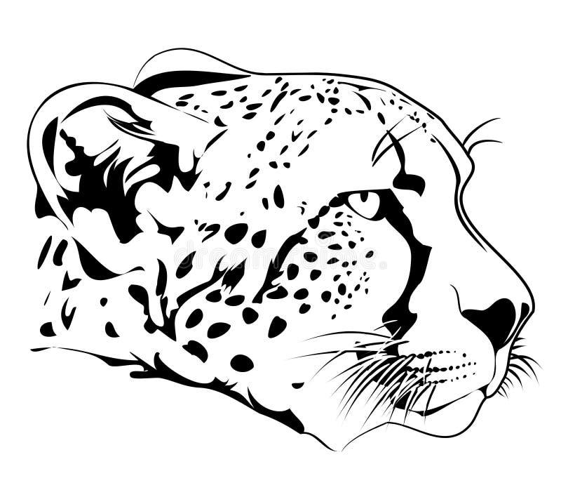 Cheetah. Vector illustration of cheetah head royalty free illustration