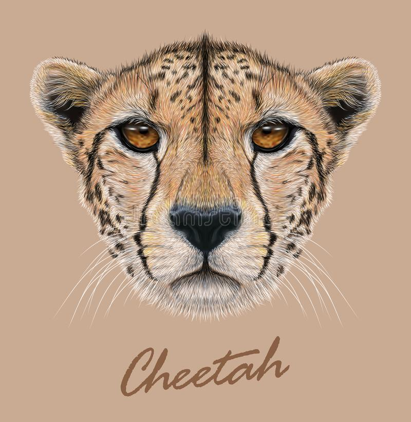 Free Cheetah Animal Cute Face. Vector African Wild Fast Cat Head Portrait. Realistic Fur Portrait Of Cheetah Isolated On Royalty Free Stock Photos - 142330658