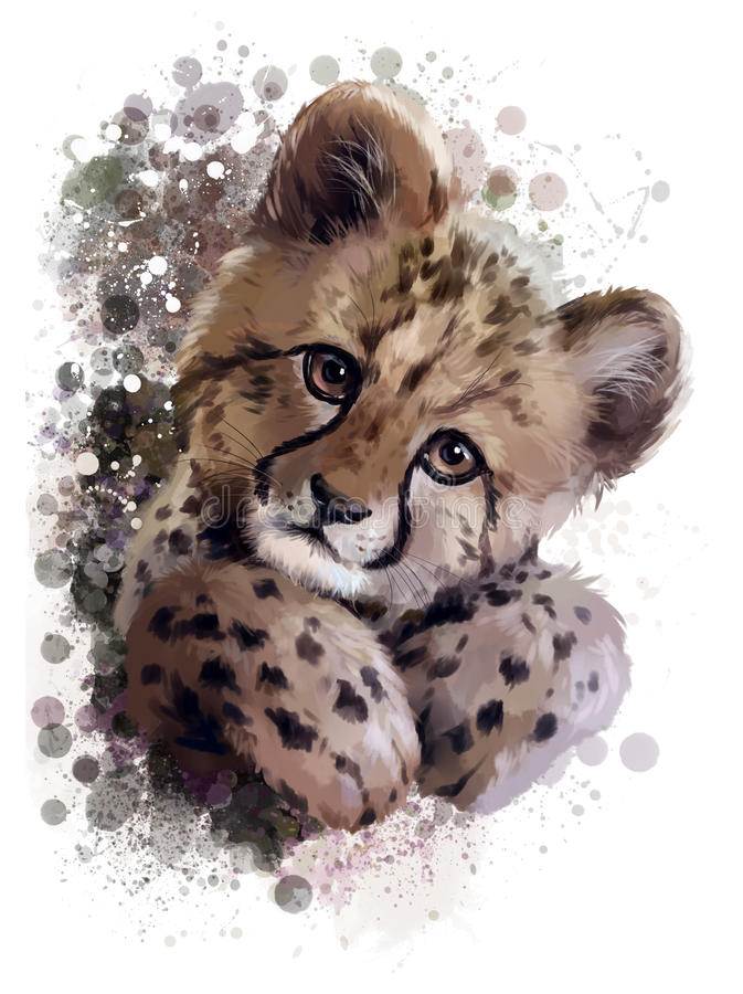 Cheetah cub stock illustration
