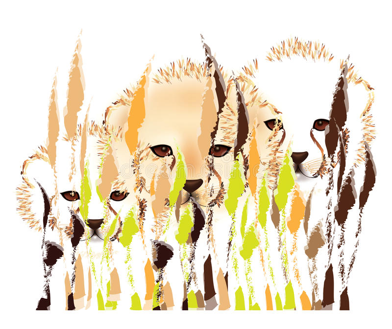 Cheetah cubs. Hiding in the bush -abstract on white background royalty free illustration