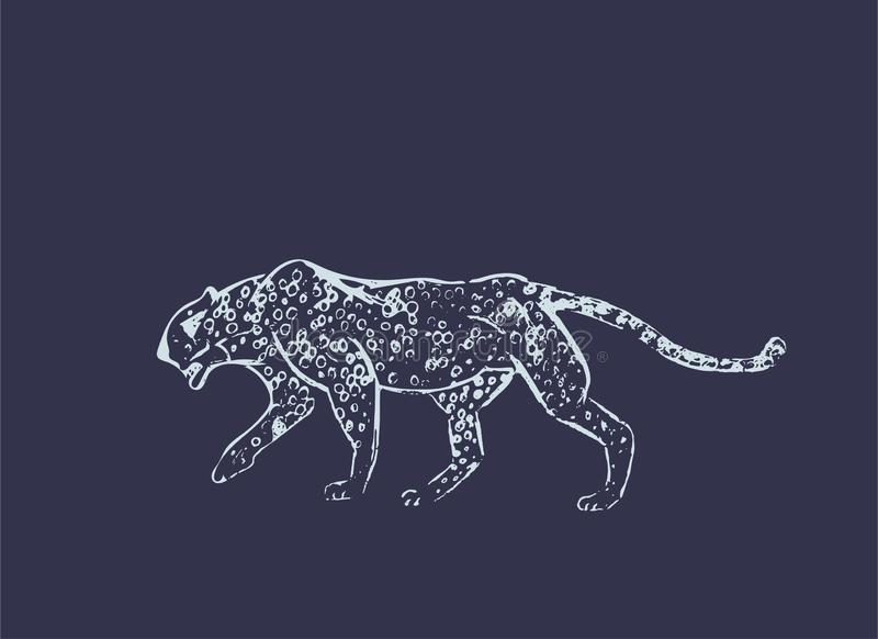 Cheetah. Hand drawn ink sketch. Horizontal drawing. Vector engraving. Predator line art. White line illustration isolated on dark. Blue background. Safari royalty free illustration