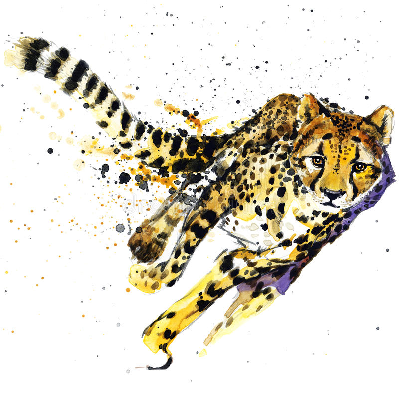 Cheetah T-shirt graphics, African animals cheetah illustration with splash watercolor textured background. unusual illustration w vector illustration