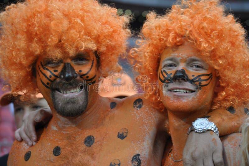 Cheetas fans royaltyfri fotografi