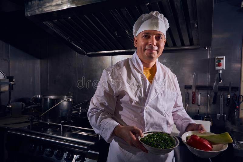 Chef cook, great design for any purposes. Cooking concept. Kitchen portrait. Healthy food. Diet concept. Chef concept stock photos