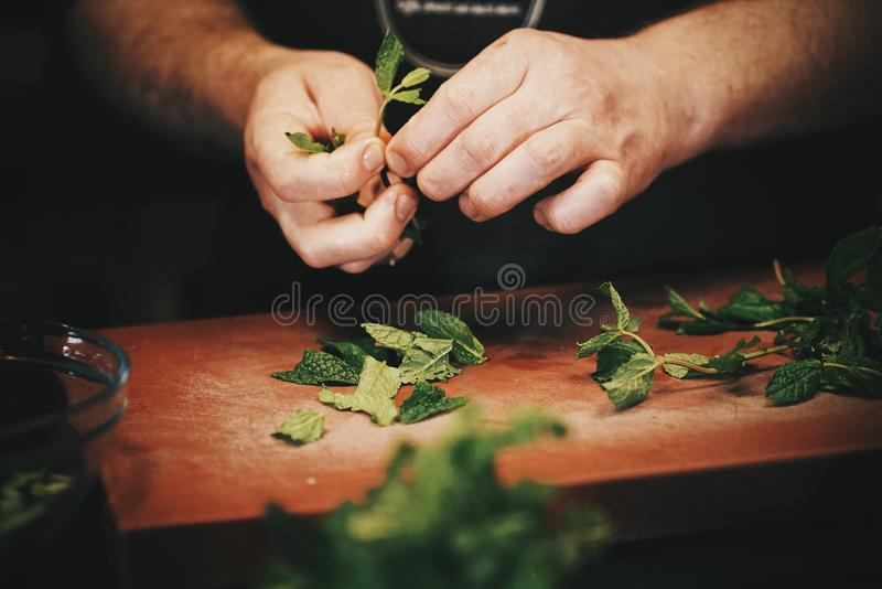 Chef. royalty free stock photos