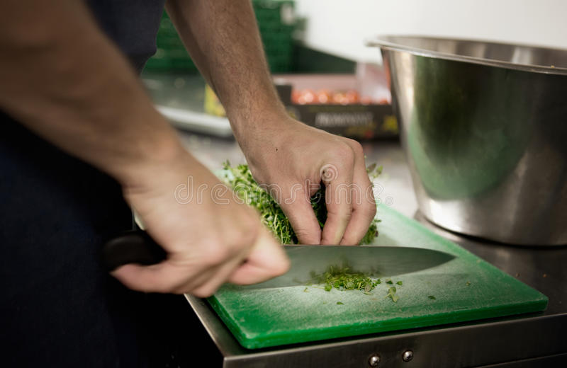 Chef Cutting Herbs lizenzfreie stockbilder