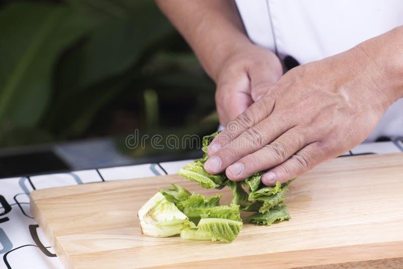 Chef, der Scheibenkopfsalat auf Messer hält stockfotografie