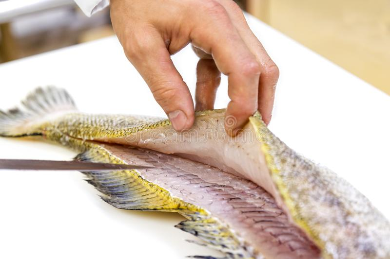 A chef filleting a zander with a knife on white chopping board. Skin and fins royalty free stock photos