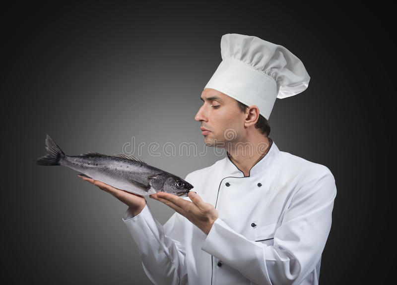 Chef with a fish. Portrait of a chef looking at the fish in his hands, studio shot, gray background royalty free stock photography