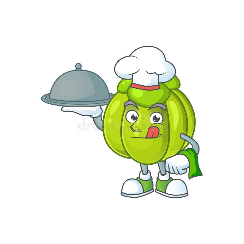 Chef with food green pumpkin ripe on a white background. Vector illustration royalty free illustration