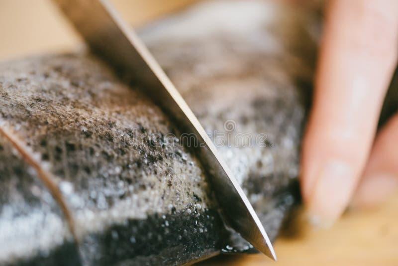 Chef-kok die ruwe vissenforel, close-up snijden royalty-vrije stock afbeelding