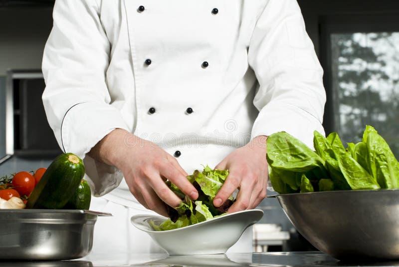 Download Chef preparing salad stock photo. Image of bowl, closeup - 23976604