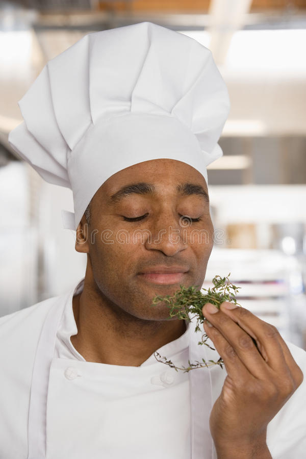 Chef savouring aroma of herbs royalty free stock photo