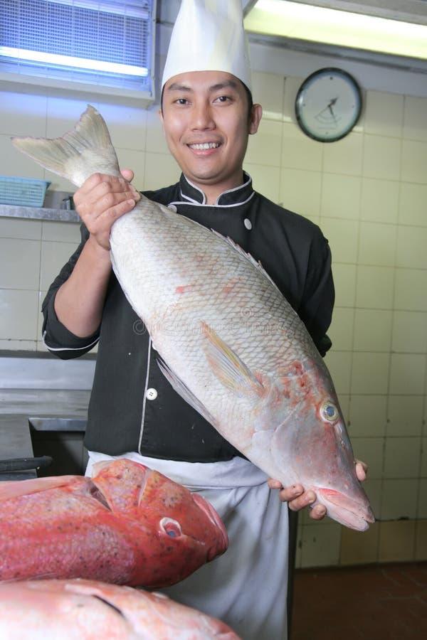 Chef und Fische stockbild