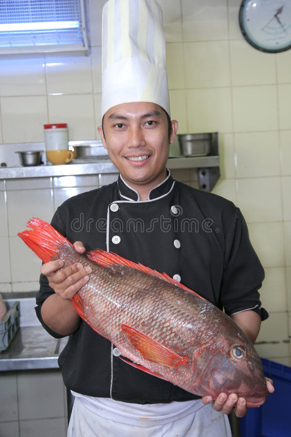 Chef- und Schnapperfische stockfoto