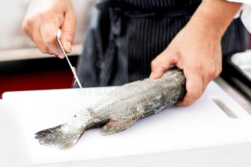 Chef at work, chef filleting fish at the kitchen, Chef in restaurant kitchen filleting fish. Background stock image