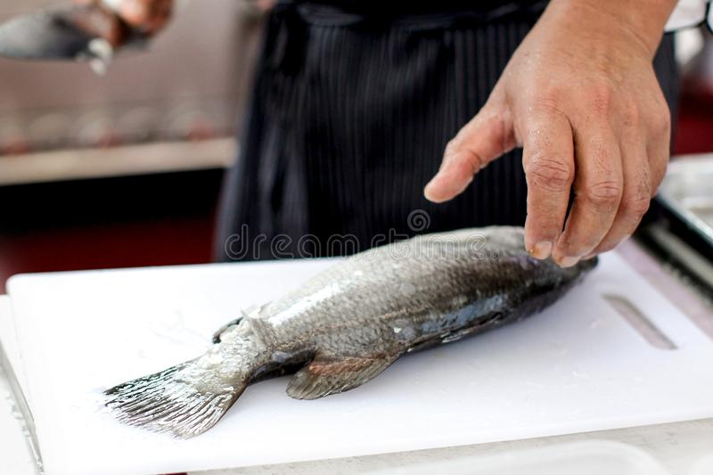 Chef at work,  chef filleting fish at the kitchen, Chef in restaurant kitchen filleting fish. Chef at work, chef filleting fish at the kitchen, Chef in royalty free stock photos