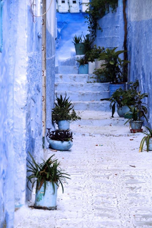 chefchaouen详细资料房子典型的摩洛哥 免版税库存照片
