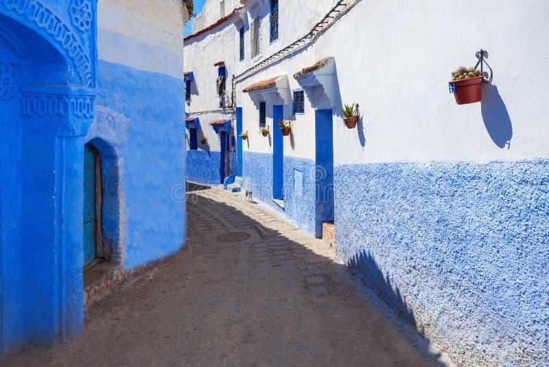 Chefchaouen i Marocko arkivbild