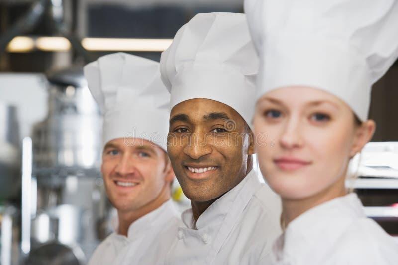 chefs fotos de stock royalty free