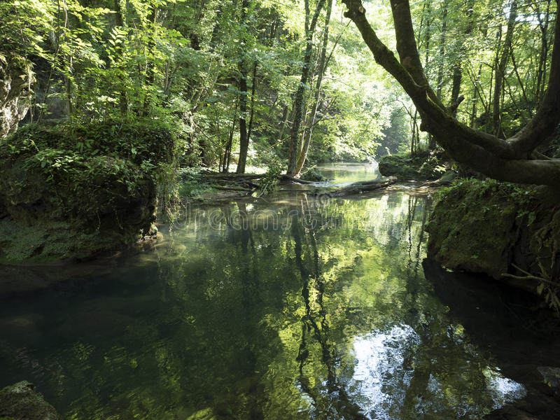 Cheile Nerei国家公园的,罗马尼亚Beiu河 库存照片
