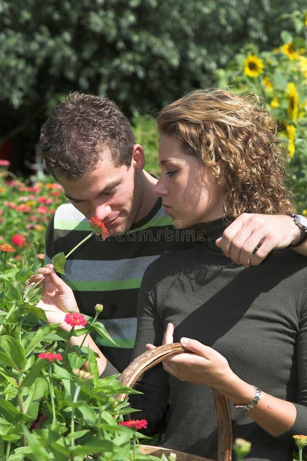 Cheirando a flor imagem de stock royalty free