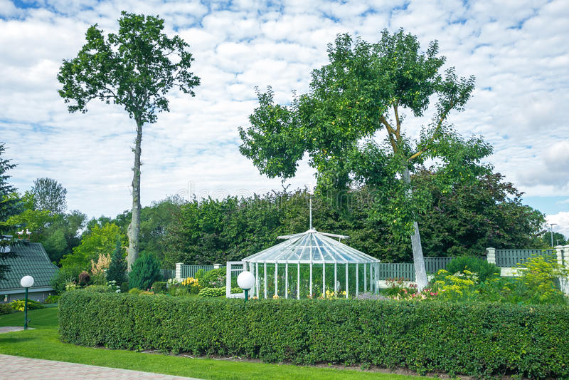 Cheiro verde do jardim e do verão imagem de stock royalty free