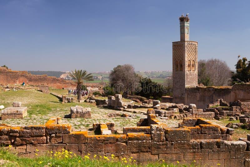 Chellah废墟和尖塔,拉巴特,摩洛哥 免版税库存照片