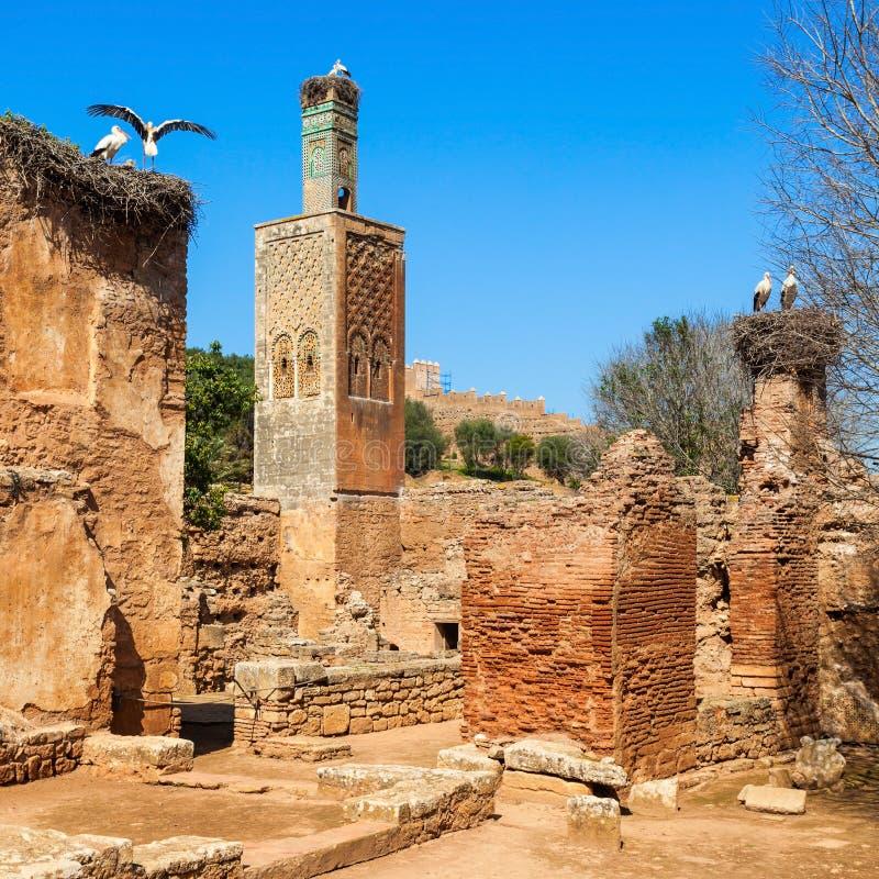 Chellah στη Rabat στοκ εικόνα