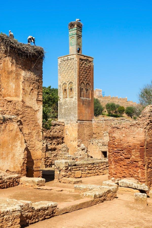 Chellah in Rabat royalty-vrije stock fotografie