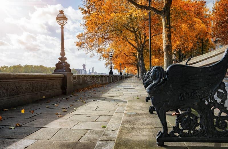 Chelsea Embankment während der Herbstzeit lizenzfreie stockfotos