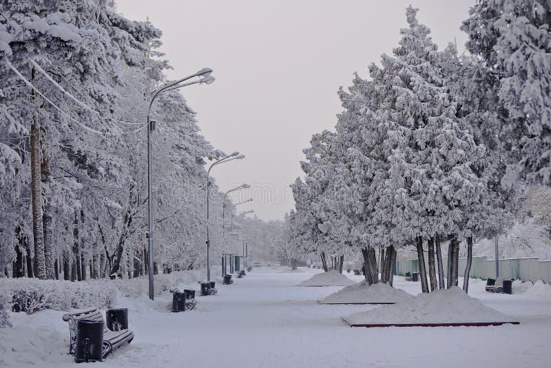 chelyabinsk Parc du ` s de Gagarin pendant l'hiver image stock