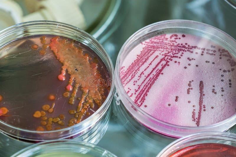 Chemia proces zdjęcie stock