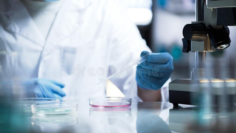 Chemical lab developing new substance for production of household chemicals royalty free stock image