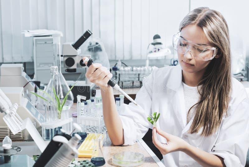 chemical laboratoriumforskare royaltyfria foton