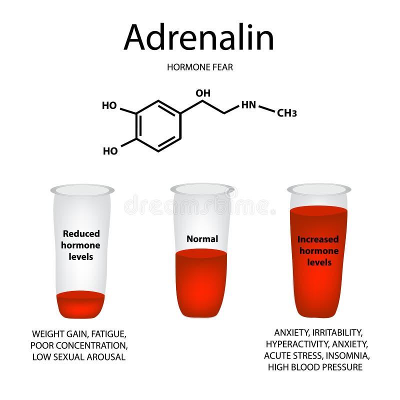 Chemical molecular formula of adrenaline hormone. Hormone fear a vector illustration