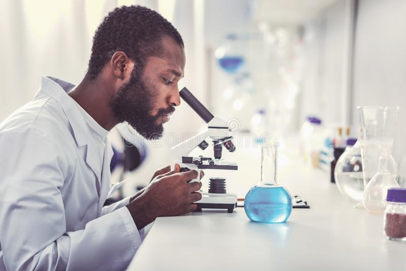 Young chemical practitioner looking into microscope. Chemical practitioner. Young chemical practitioner feeling busy while looking into modern microscope royalty free stock photo