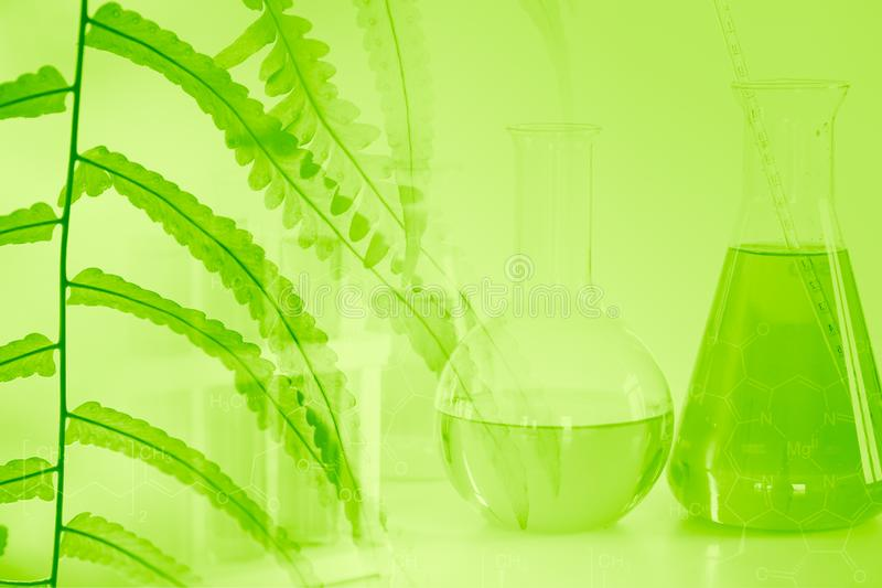 Chemical Science and Bio Technology of Green nature background. Chemical Science and Bio Technology of Green nature herbal extrac in medical laboratory for royalty free stock photos