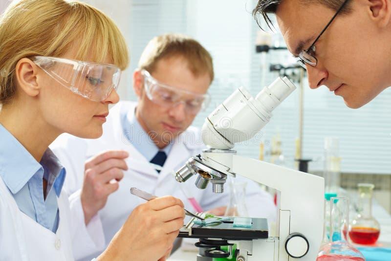 Chemici op het werk stock afbeelding