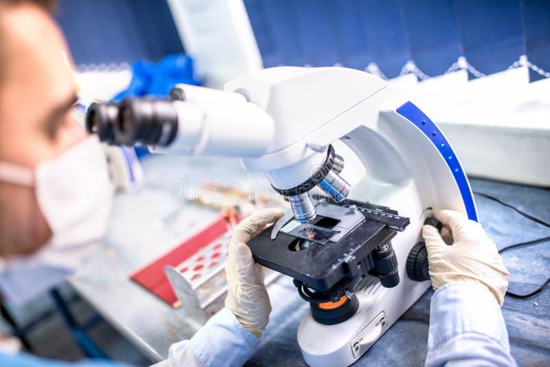 Chemicusonderzoeker die met microscoop voor gerechtelijk bewijsmateriaal werken royalty-vrije stock foto