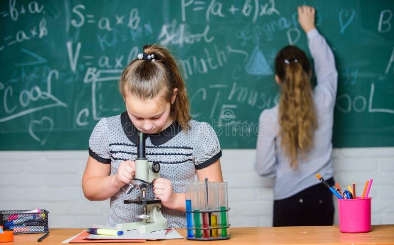 Chemieklassen Onderwijsexperiment De meisjesklasgenoten bestuderen chemie De chemische reacties van microscoopreageerbuizen stock foto's