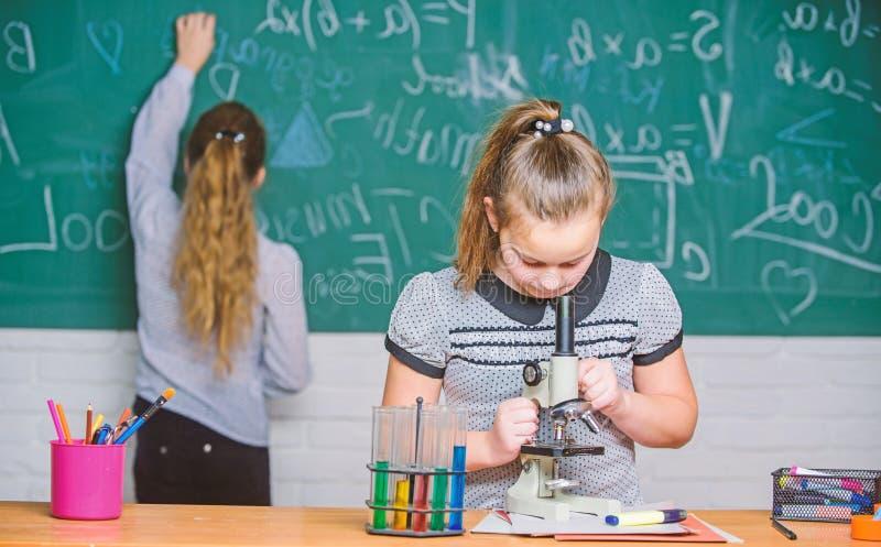 Chemieklassen Onderwijsexperiment De meisjesklasgenoten bestuderen chemie De chemische reacties van microscoopreageerbuizen royalty-vrije stock foto's