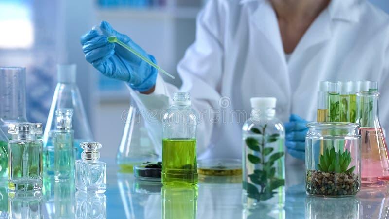 Chemiewetenschapper die vloeibaar mengsel, kruidenuittreksel voor parfums analyseren stock fotografie