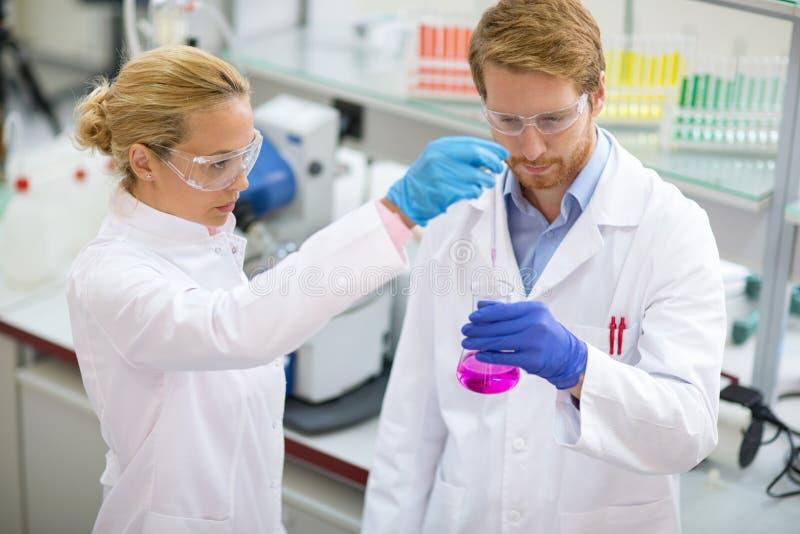 Chemiker, der Probe vom Becher entnimmt stockbilder