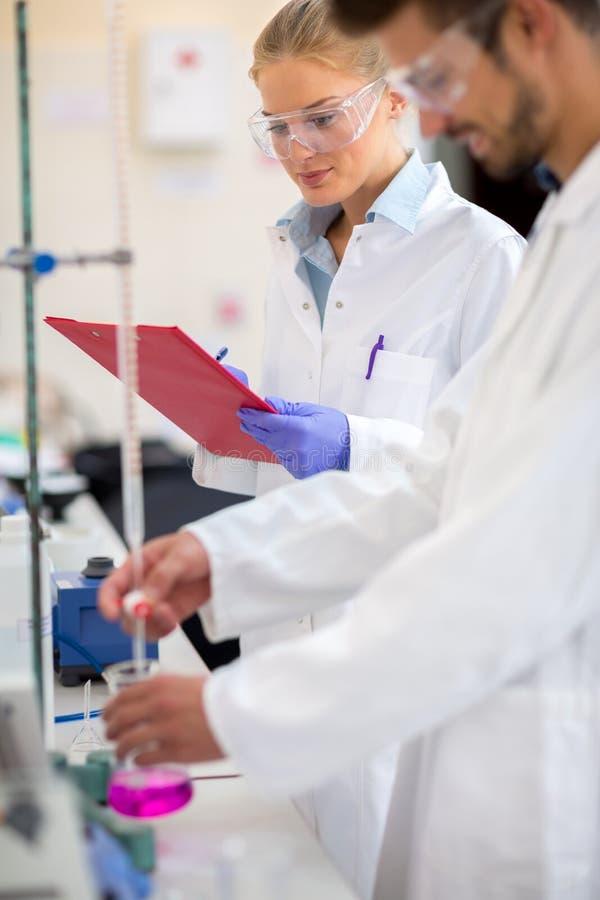 Chemikerarbeitskraft-Maßflüssigkeit im Labor lizenzfreie stockfotos