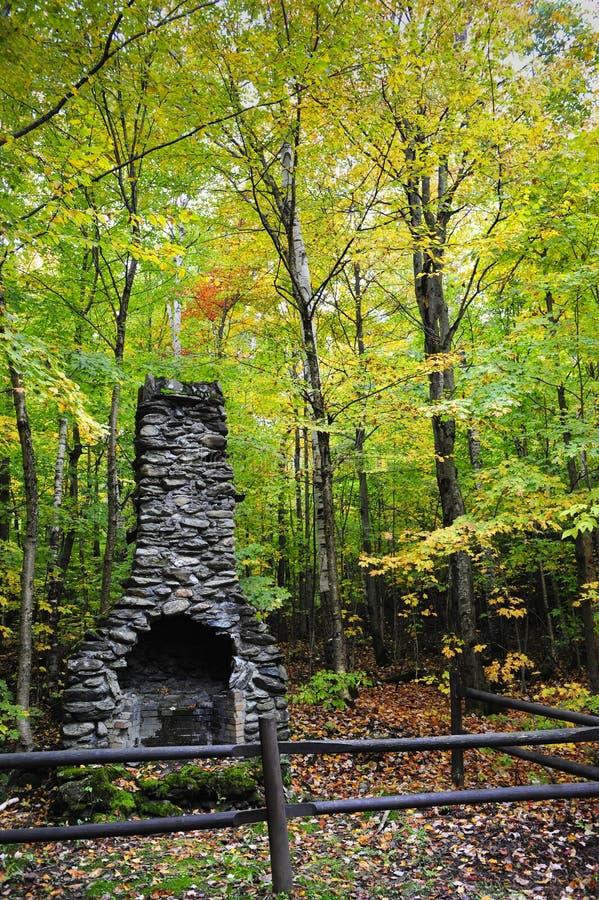 Cheminée dans la forêt image stock