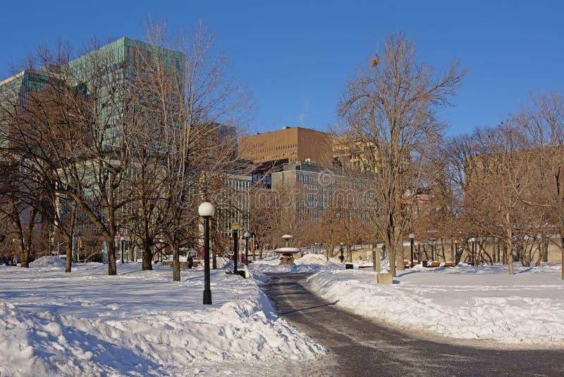 Chemin à travers le parc de confédération couvert dans la neige un jour d'hiver à Ottawa, capitale du Canada photographie stock libre de droits