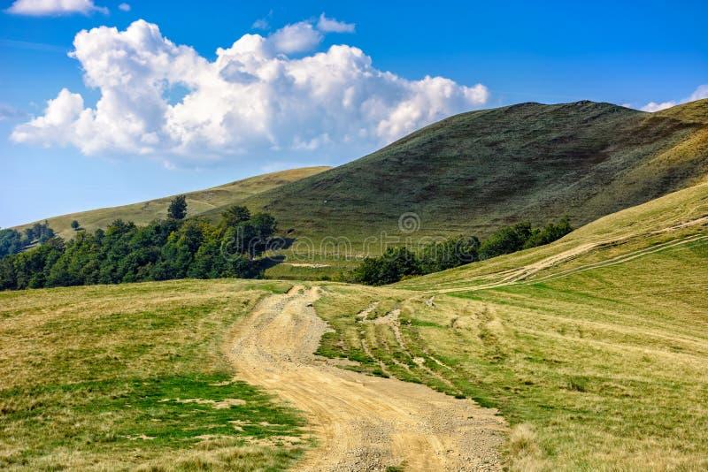 Download Chemin à Travers Le Pré De Côté De Colline Dans Carpathiens Photo stock - Image du extérieur, vallée: 77154138